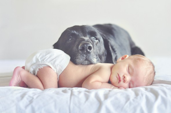 baby-and-dog